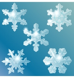 transparent glass snowflakes vector image