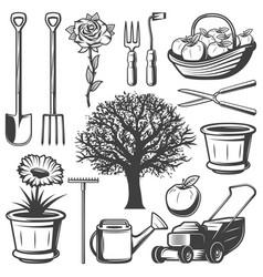 vintage garden elements collection vector image vector image