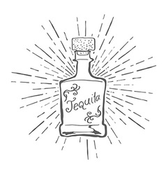 Vintage tequila bottle with sunburst vector