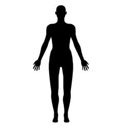 Body vector