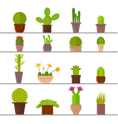 cartoon cactus plant in pots vector image vector image