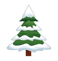 Pine tree with snow icon vector