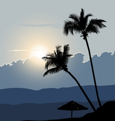 A tropical early morning sunrise with palm trees vector