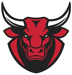 The head of a ferocious bull vector image