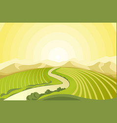 amazing landscape of sunrise above fields at vector image vector image