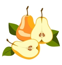Pear whole and pieces vector image