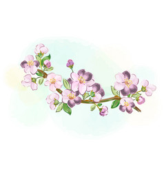 Sakura branch for greeting cards and greetings vector