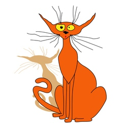 Orange cat sitting vector image