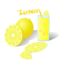 Fresh ripe orange slices with juice vector image