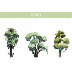 Set of watercolor trees vector image vector image