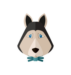 siberian husky head icon in flat design vector image