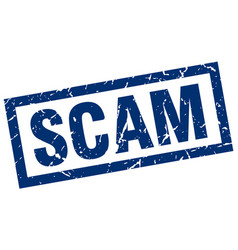 Square grunge blue scam stamp vector