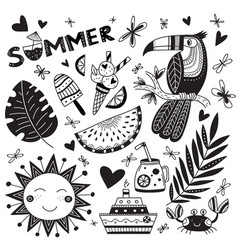 summer time set in ethnic tropical style and word vector image