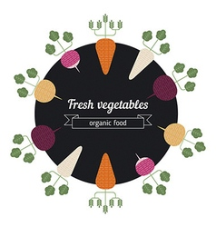 Turnips daiko radish carrot vegetables vector