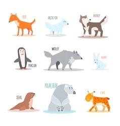 Arctic and antarctic animals penguin vector