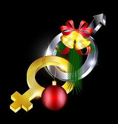 female-male with Christmas vector image