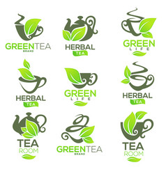 Greenherbal organic tea logo template design vector
