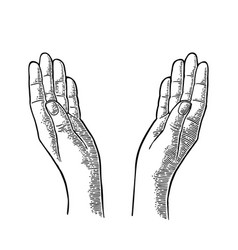 Two praying hands black vintage engraving vector