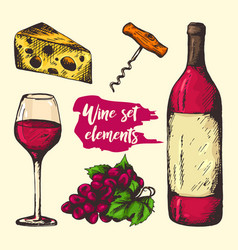 colourful sketch of wine elements vector image vector image