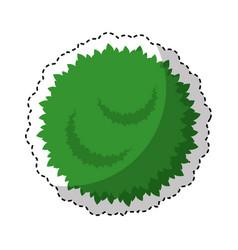 garden bush isolated icon vector image