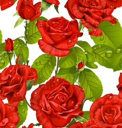 Luxury seamless pattern of red roses on a white vector image vector image