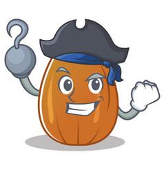 Pirate almond nut character cartoon vector