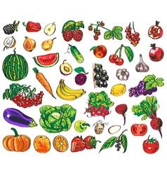 vegetables fruits berries vector image