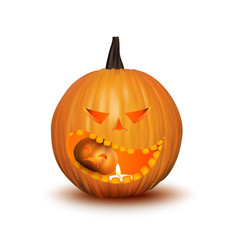 Halloween pumpkin isolated on white vector