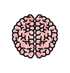 Drawing brain human hemispheres think knowledge vector