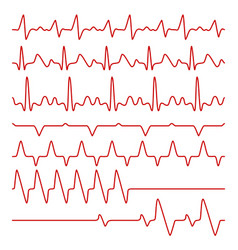 line cardiograms or electrocardiogram on vector image vector image