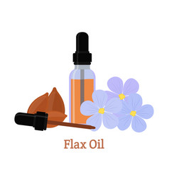 flax natural oil seeds flowers essential oil vector image vector image