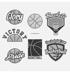 Logo Set for a Basketball Team vector image