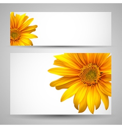 Flower background templates vector