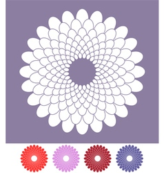 Flower chrysanthemum vector