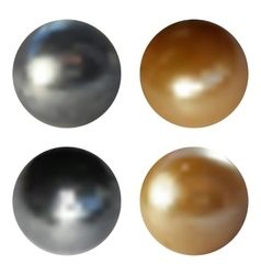 Metallic chrome spheres set on white background vector