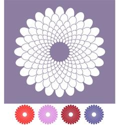Flower Chrysanthemum vector image vector image