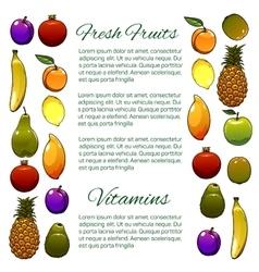 Fruit banner of fresh fruits vector image