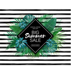 Summer sale advertising template tropic leaves vector