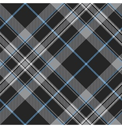 Pride of scotland platinum kilt tartan diagonal vector