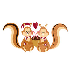 cute squirrel with acorn christmas hat cartoon vector image