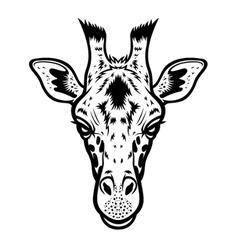 Giraffe Head BW vector image