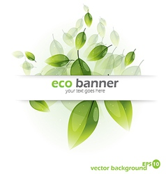 green backg vector image vector image