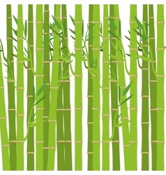 Green bamboo plant vector