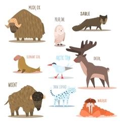 Arctic and Antarctic Animals Birds vector image vector image