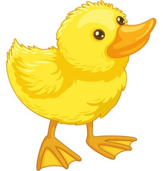 cute cartoon duck vector image vector image