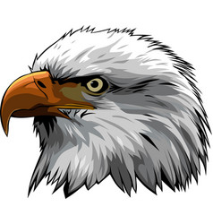 Eagle head 3 vector