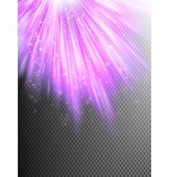 Bright pink shining fireworks EPS 10 vector image