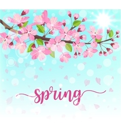 Spring lettering Blossoming tree brunch with vector image