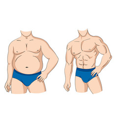 fat and fit vector image vector image