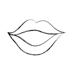 sexy female lips icon vector image